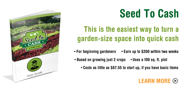 seed-to-cash-banner-garden-hero