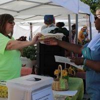 Meet September's Garden Hero – Elisa Bedsworth: Growing a Market for Backyard Farmers in Kansas City MO